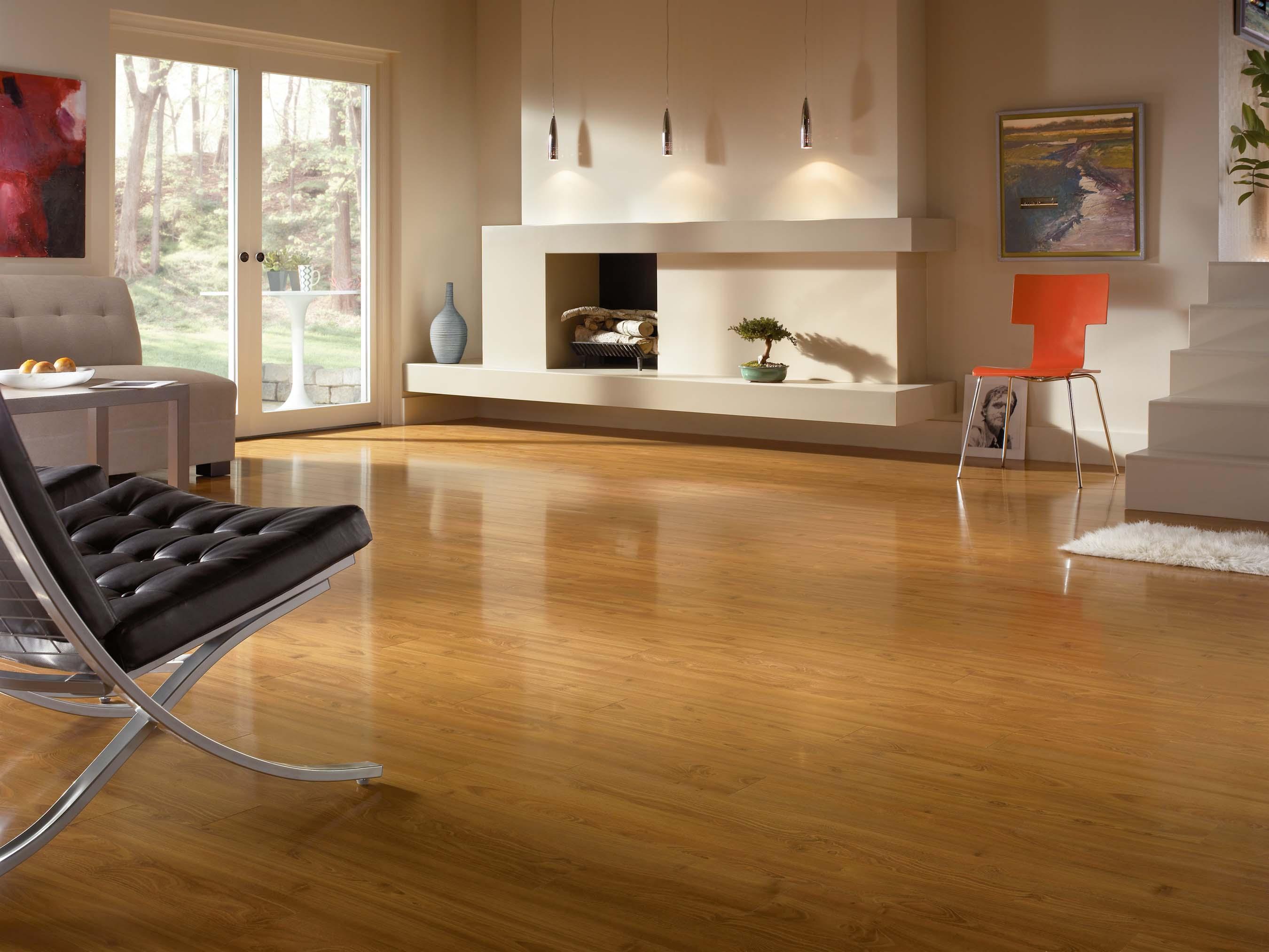 Cách phòng chống và xử lý mối mọt cho sàn gỗ