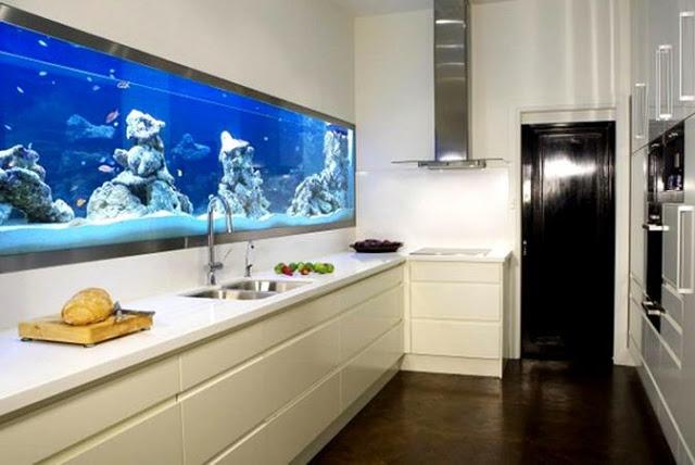 bể cá trong nhà bếp - 1
