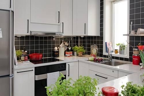 Cây xanh trong nhà bếp