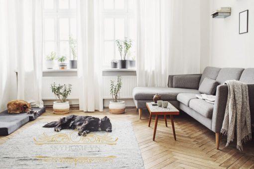 doi net ve sofa phong khach