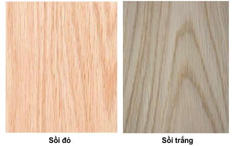 Gỗ sồi đỏ và gỗ sồi trắng vớinhững đặc điểm khác nhau(skyhome.vn)